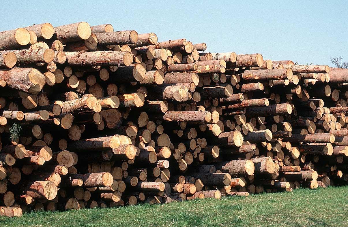 eco bau Instrumente Eco BKP Eco BKP